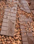 Le Petit Chocolatier (Alençon - Orne - Normandie) : Tablettes de chocolat produites à partir de fèves sélectionnées